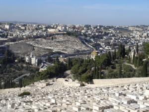 2016-10-09 Impressionen-Ness-Ziona-Israel 02