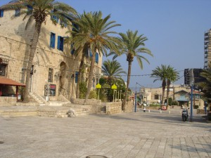 2016-10-09 Impressionen-Ness-Ziona-Israel 09