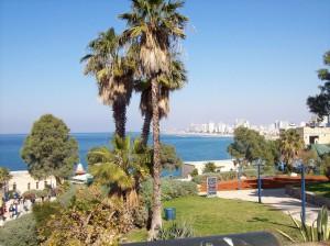 2016-10-09 Impressionen-Ness-Ziona-Israel 23